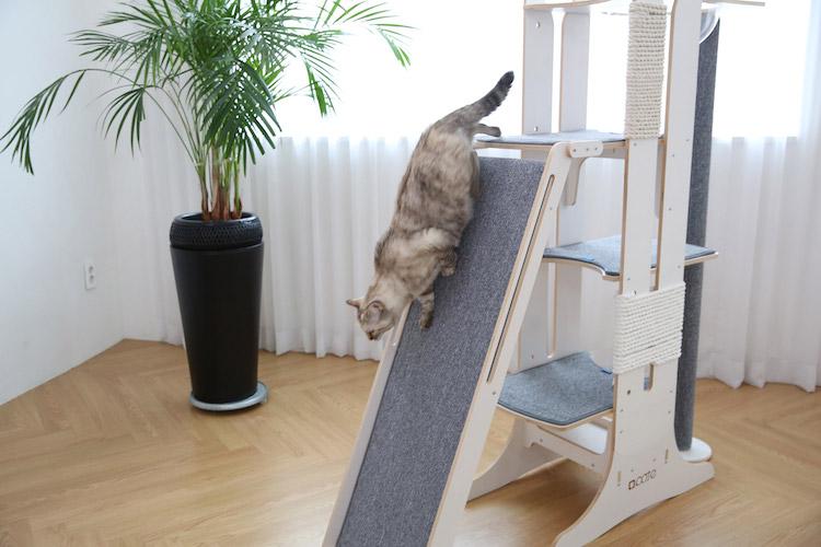 Torre del gato